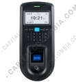 Control de Acceso Biométrico Anviz VF30